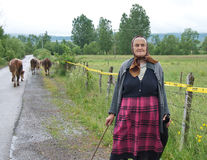Older shepherdess on the road between the mine fields Stock Photo