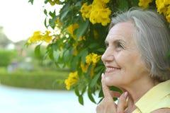Older woman Stock Image