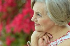 Older woman with flowers Stock Image