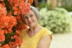 Older woman with yellow flowers Royalty Free Stock Photography