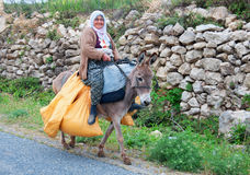 Olderly woman carries yellow bags on a donkey Stock Photography