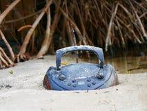 Oldies i plażowa zabawa Zdjęcia Stock
