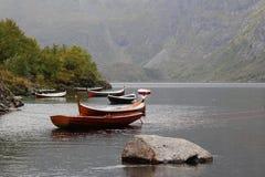 Oldies mas goldies em Lofoten Imagem de Stock Royalty Free