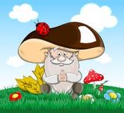 Oldman-fungo sveglio di favola di vettore del fumetto Fotografie Stock Libere da Diritti