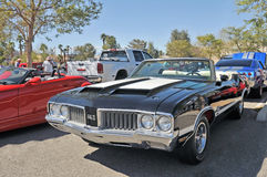 Oldsmobile 442 Royalty Free Stock Images