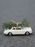 Oldtimer car is carrying a Christmas fir. On the road Royalty Free Stock Images
