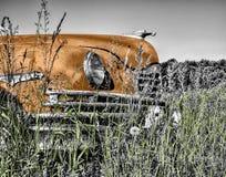 Oldtimer, Car, Old, Vintage Stock Image