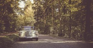 Oldtimer Mercedess W 110 stockfotos