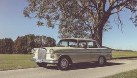 Oldtimer van Mercedes W 110 royalty-vrije stock fotografie