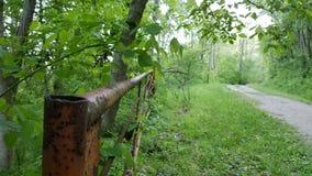 Oldtown Creek Preserve