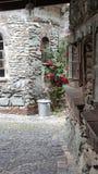 Oldtown rosor Windows Arkivbilder