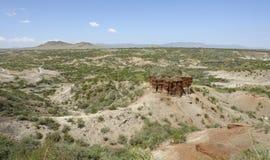 Olduvai klyfta i Afrika Arkivbild