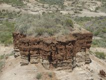Olduvai-Schlucht-Sonderkommando Lizenzfreie Stockbilder