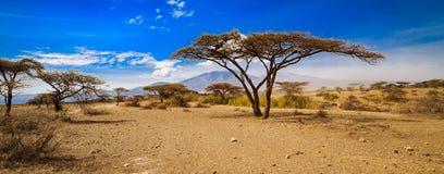Olduvai in Tansania Stockfotografie