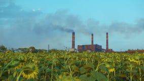 Oleada de las pilas de humo de la fábrica de Timelapse, humo grueso metrajes