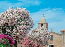 Oleanders door de kerk stock foto's