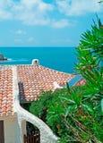 Oleandro e telhados Imagens de Stock