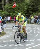 Oleg骑自行车的Thinkov在Le Markstein 图库摄影