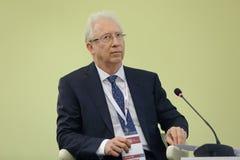 Oleg Viyugin Royalty Free Stock Image