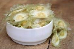 Oleifera zaden van moringa royalty-vrije stock foto