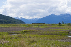 Oleiro Marsh Wildlife Refuge Anchorage Alaska Fotografia de Stock