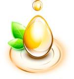 Olej krople z rośliną na czochrach Obraz Royalty Free