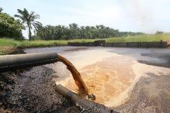 Oleju Palmowego Młyński Odpływowy wastewater zwalnia - serie 2 (jabłczak) Zdjęcie Stock