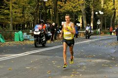 Oleksandr Sitkovskiy the winner of Florence marathon 2013 , Italy Royalty Free Stock Images