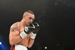 Oleksandr Usyk, WBO洲际的次重量级冠军 库存照片