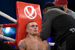 Oleksandr Usyk, WBO Inter-Continental cruiserweight champion Royalty Free Stock Image
