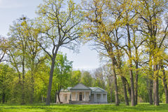 Oleksandriia park w Bili Tserkva, Ukraina Obraz Stock
