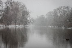 Olentangy zimy Rzeczna burza Zdjęcia Stock