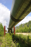 Oleoducto del transporte Alaska fotos de archivo libres de regalías