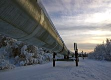 Oleoduto de Transporte-Alaska Fotografia de Stock