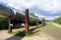 Oleoduto do transporte Alaska Fotografia de Stock Royalty Free