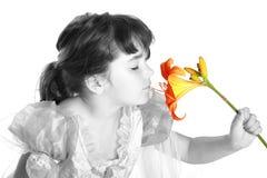 Oler una flor fotografía de archivo