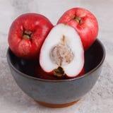 Oleracea d'Acmella de fruit (le jambu, usine de mal de dents, paracress, élisent Images libres de droits