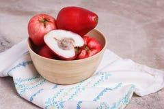 Oleracea de Acmella de la fruta y x28; el jambu, planta del dolor de muelas, paracress, elige Fotos de archivo libres de regalías