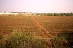 Olericulture园艺在印度 农场和菜园 免版税库存照片