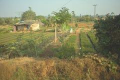 Olericulture-Gartenbau in Indien Haus von armen Indern und von Gemüsegarten Lizenzfreie Stockbilder