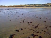 Oleron plaża Zdjęcie Stock
