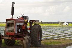 Olf vintage tractor on cultivated land Stock Photos