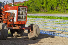 Olf vintage tractor on cultivated land Royalty Free Stock Photos