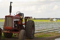 Olf Weinlesetraktor auf bebautem Land Stockfotos