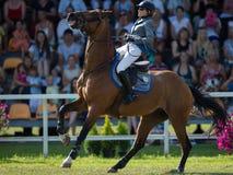 Olga Chechina mit dem Pferd Lascar 41 lizenzfreie stockfotos