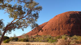 olgas центра Австралии красные Стоковое Изображение RF