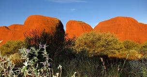 The Olgas, Northern Territory, Australia. Panorama of the Olgas, Kata Tjuta, Northern Territory, Australia royalty free stock photo