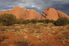 The Olgas in the red Australian dersert Royalty Free Stock Image