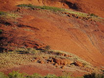 The Olgas in the red centre Stock Image