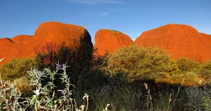 Olgasen, nordligt territorium, Australien Royaltyfri Foto